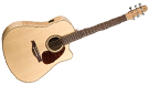 SEAGULL Performer CW Flame Maple HG QI