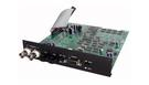 FOCUSRITE Digital Out Board for ISA One / ISA 430