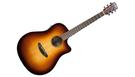 BREEDLOVE Discovery Dreadnought CE SB B-Stock