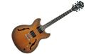 IBANEZ AS53 TF Tobacco Flat B-Stock
