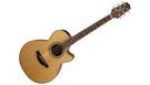 TAKAMINE GF15CE Natural B-Stock