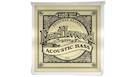 ERNIE BALL 2070 Earthwood Acoustic Bass