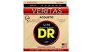 DR STRINGS VTA-12 Veritas Acoustic
