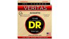DR STRINGS VTA-10 Veritas Acoustic