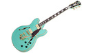 D'ANGELICO Excel DC Shoreline Surf Green