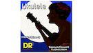 DR UFSC Ukulele Soprano / Concert