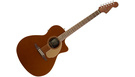 FENDER Newporter Player WN Rustic Copper
