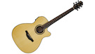 CRAFTER HT250CE NT