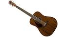 FENDER PM-1 Dreadnought All Mahogany LH with case (Left handed)