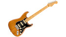 FENDER American Professional II Stratocaster HSS MN Roasted Pine
