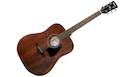 IBANEZ AW54 OPN Open Pore Natural