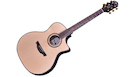 CRAFTER SR G1000CE