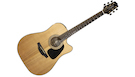 TAKAMINE GSD3CE NG Natural Gloss