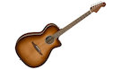 FENDER Newporter Classic with Gig Bag PF Aged Cognac Burst