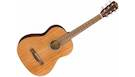 FENDER FA-15 3/4 Scale Steel with Gig Bag WN Natural