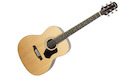 WALDEN O350W Standard Orchestra Acoustic