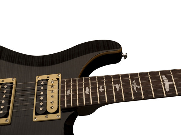 PRS SE Custom 24 Floyd Grey Black