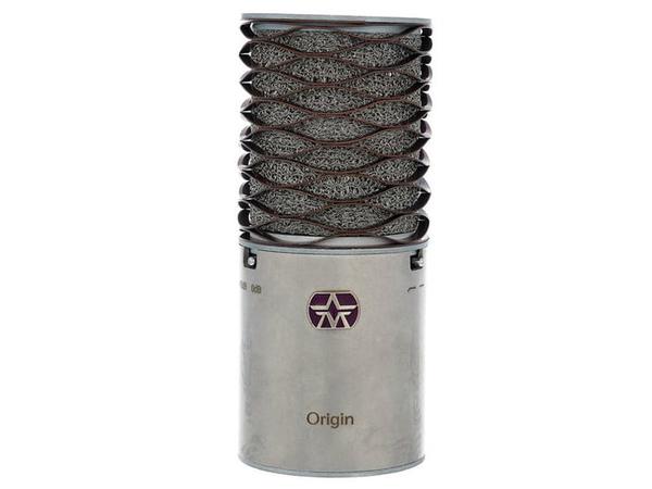 microfoni a condensatore per homestudio - Aston orign
