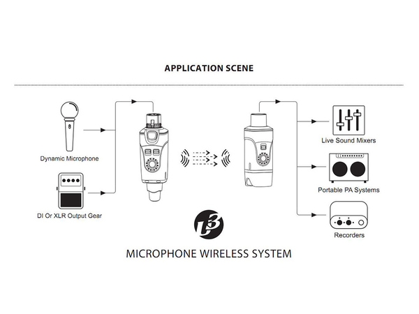XVIVE U3 Microphone Wireless System