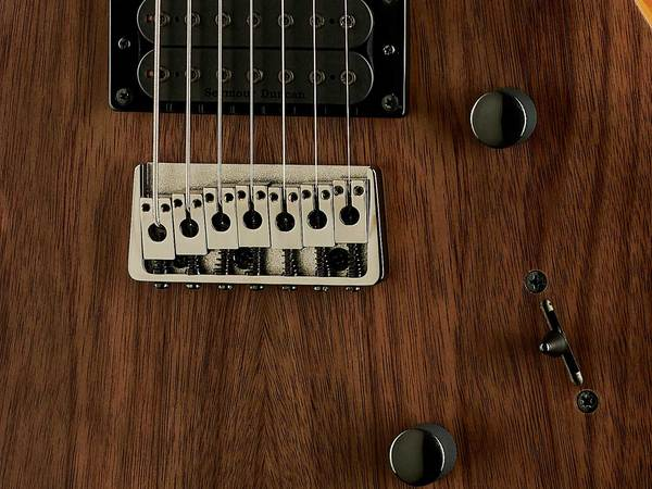 PRS SE Mark Holcomb SVN Walnut Veneer