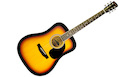 SAVANNAH SGD-10MS Matte Sunburst