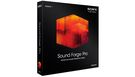 SONY Sound Forge Pro 11 (Windows) (download)