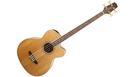 TAKAMINE GB72CE Natural B-Stock