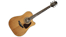 TAKAMINE GSD1CE NG Natural Gloss